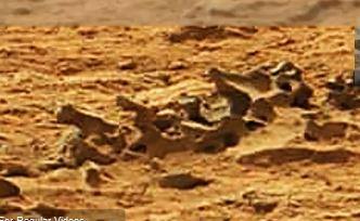 mars spine dinosaur bones mars curiosity sol 109 mission nasa