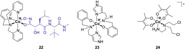 fig-c2a05-c2a0examples-of-coiii-complexes-with-marimastat-22-n2o-donor-ligands-23-and-acetylacetonato-ligands-24-line-22-wow-ufo-metals-formula
