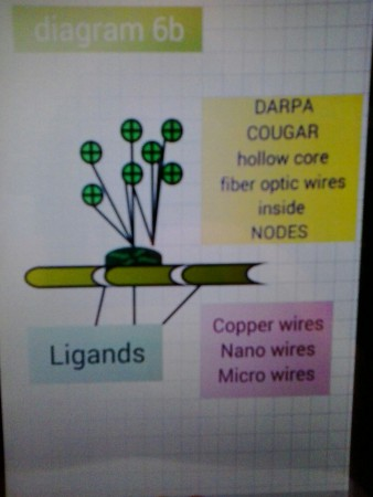 Diagram 6b ligands connect nodes wire laser signals